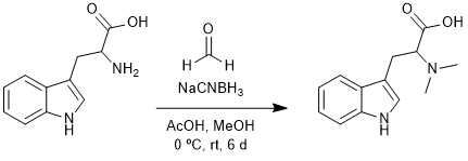 Reaction Scheme: Reductive Amination of Tryptophan